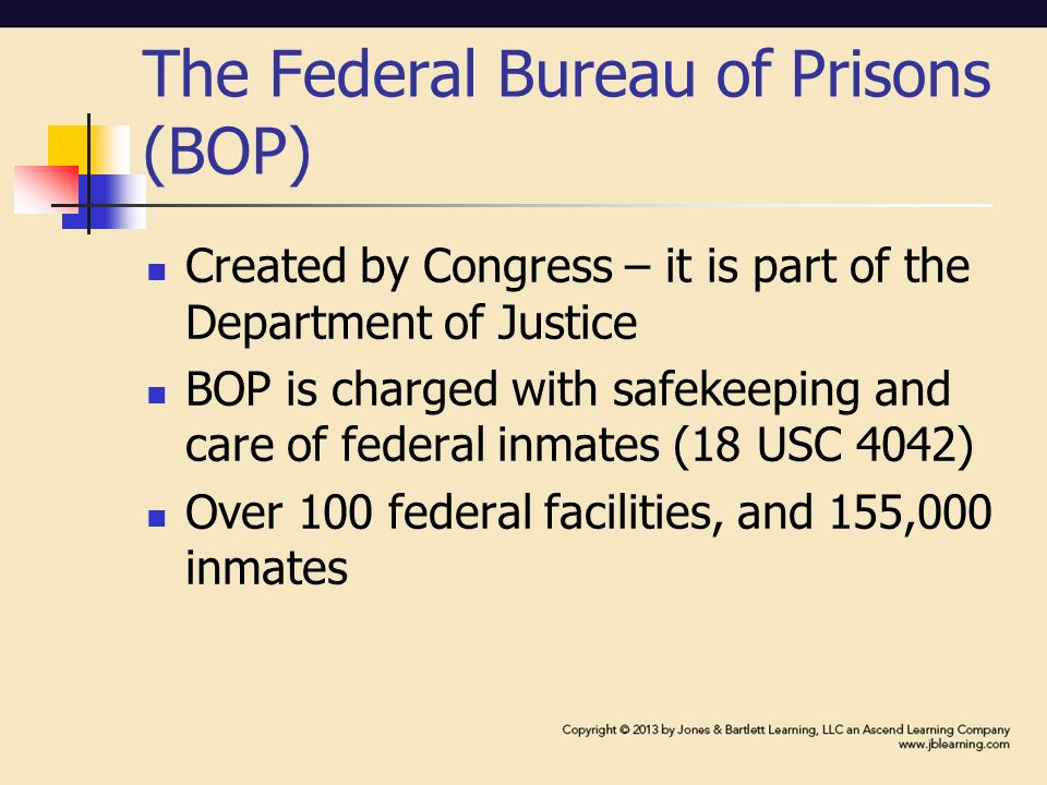 part iii statutory and administrative jails juveniles privatization and other special