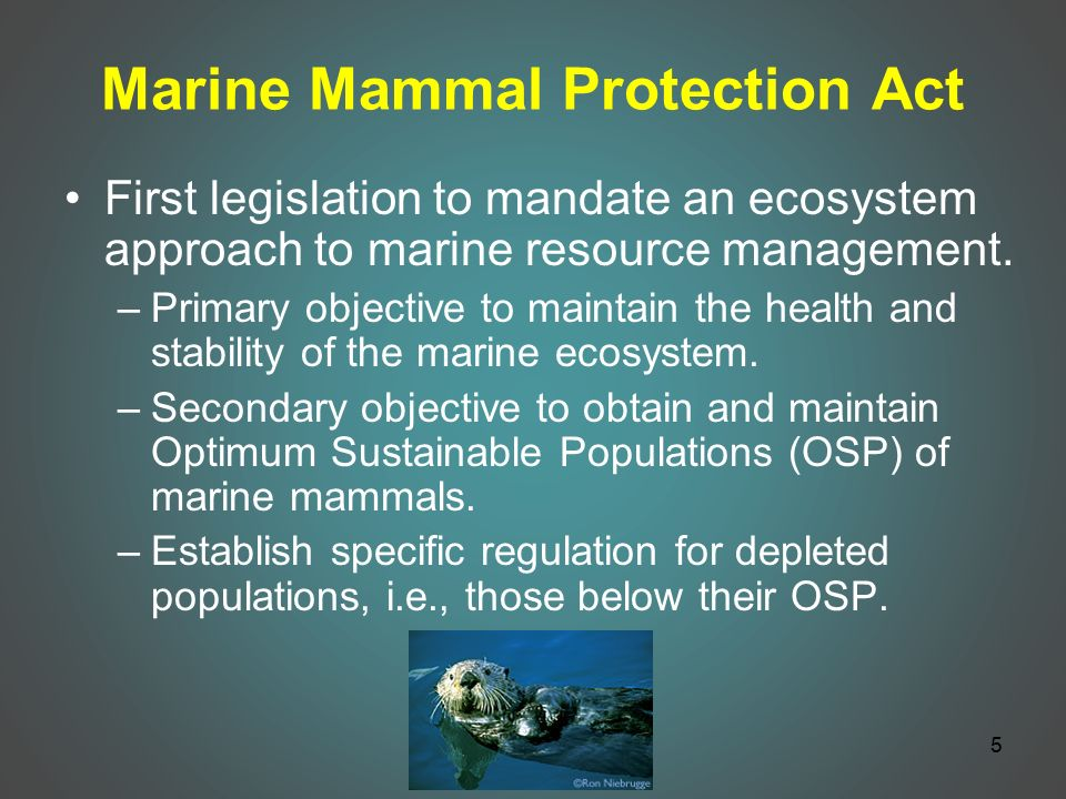marine mammal protection act of 1972 The marine mammal commission (mmc) was established under title ii of the marine mammal protection act of 1972, to provide independent oversight of the marine mammal conservation policies and programs being.