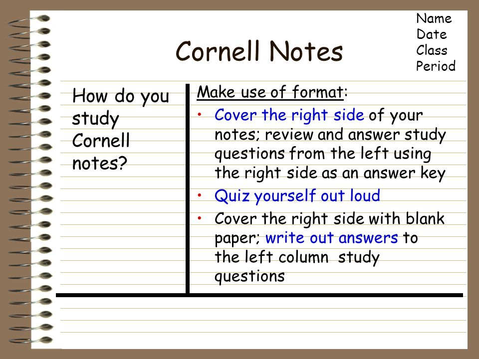 Make Your Cornell Notes Template with Word