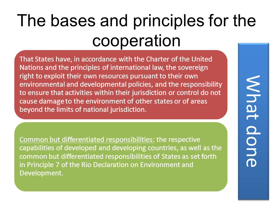 The bases and principles for the cooperation
