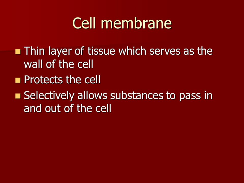 Cell membrane Thin layer of tissue which serves as the wall of the cell. Protects the cell.