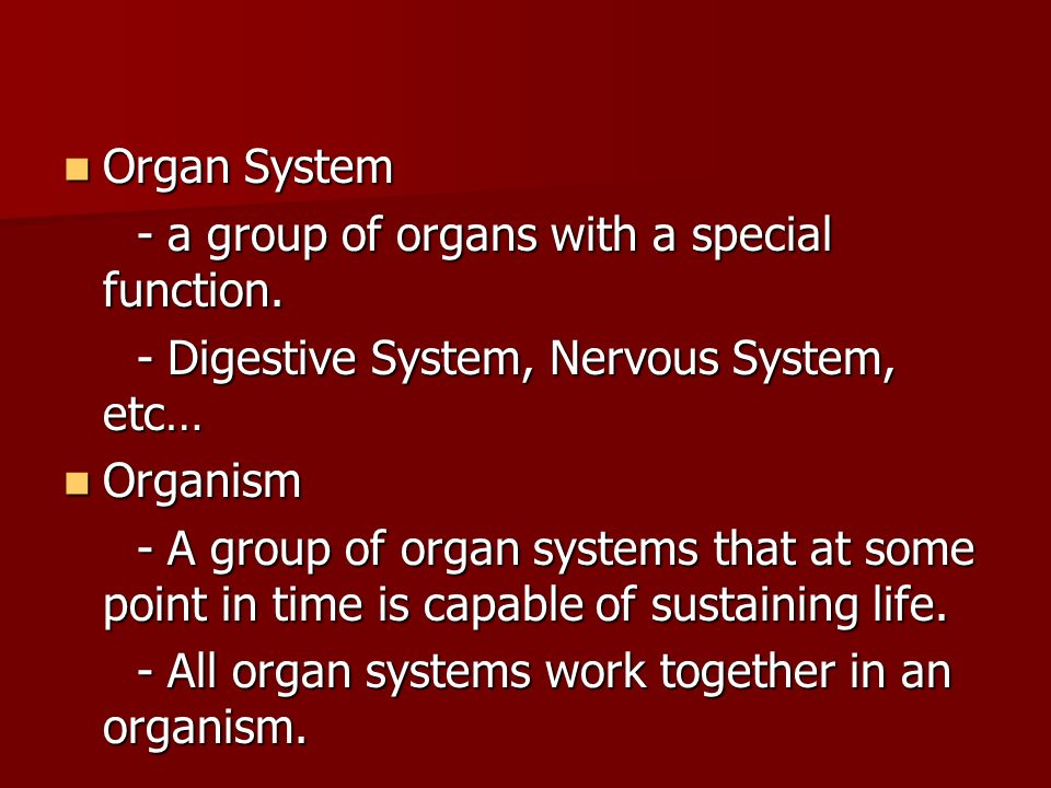 Organ System - a group of organs with a special function. - Digestive System, Nervous System, etc…