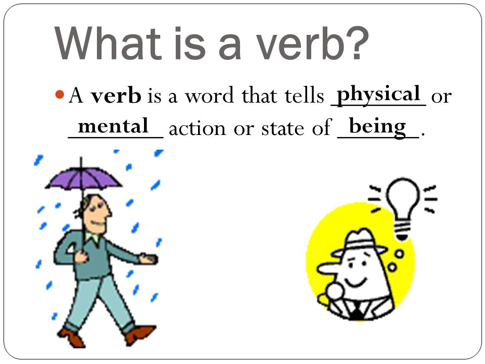what is a action verb