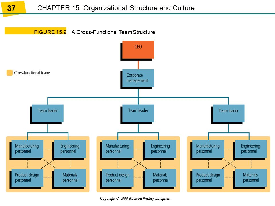 organizational culture structure design