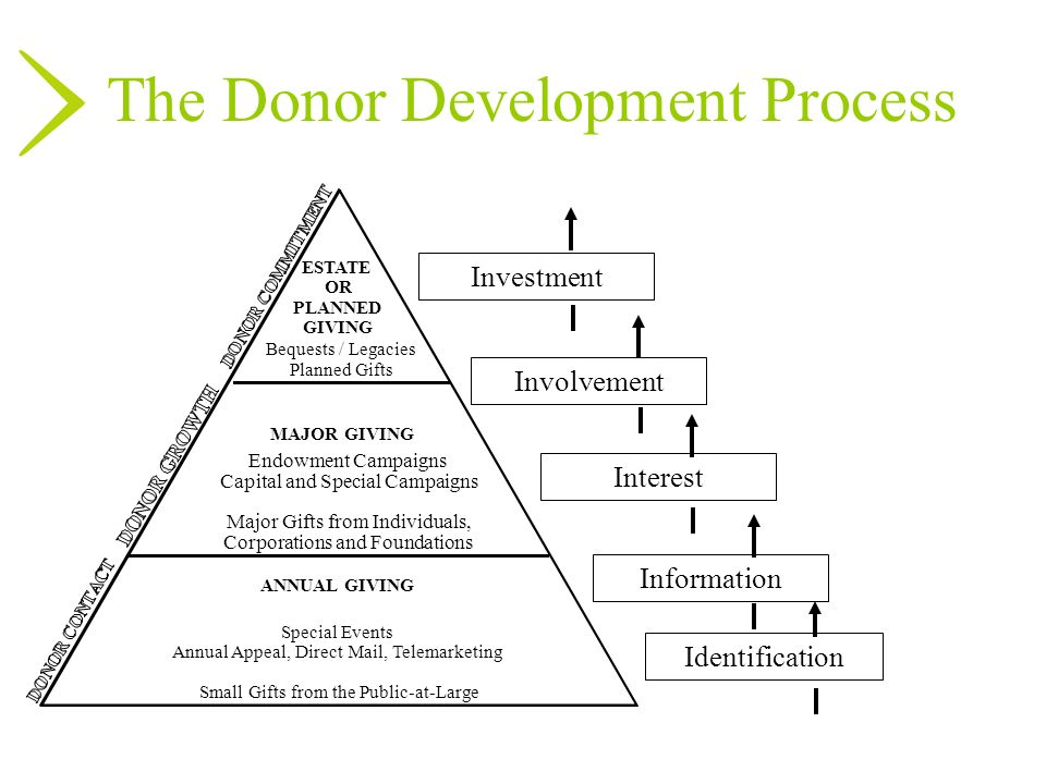 The Donor Development Process