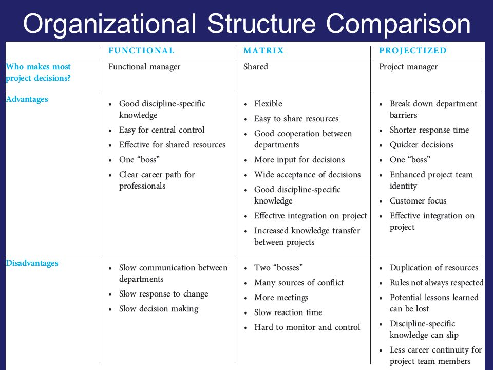 How to Compare & Contrast Organizational Structure | Your ...