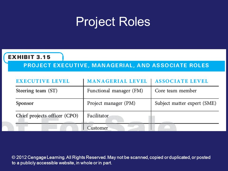 the responsibility project videos Project team member's responsibilities  the responsibilities assigned to individual team members may vary but typically will include: understanding the purpose and objectives of the project.