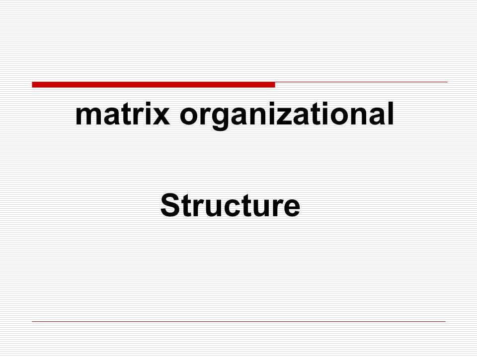matrix organizational