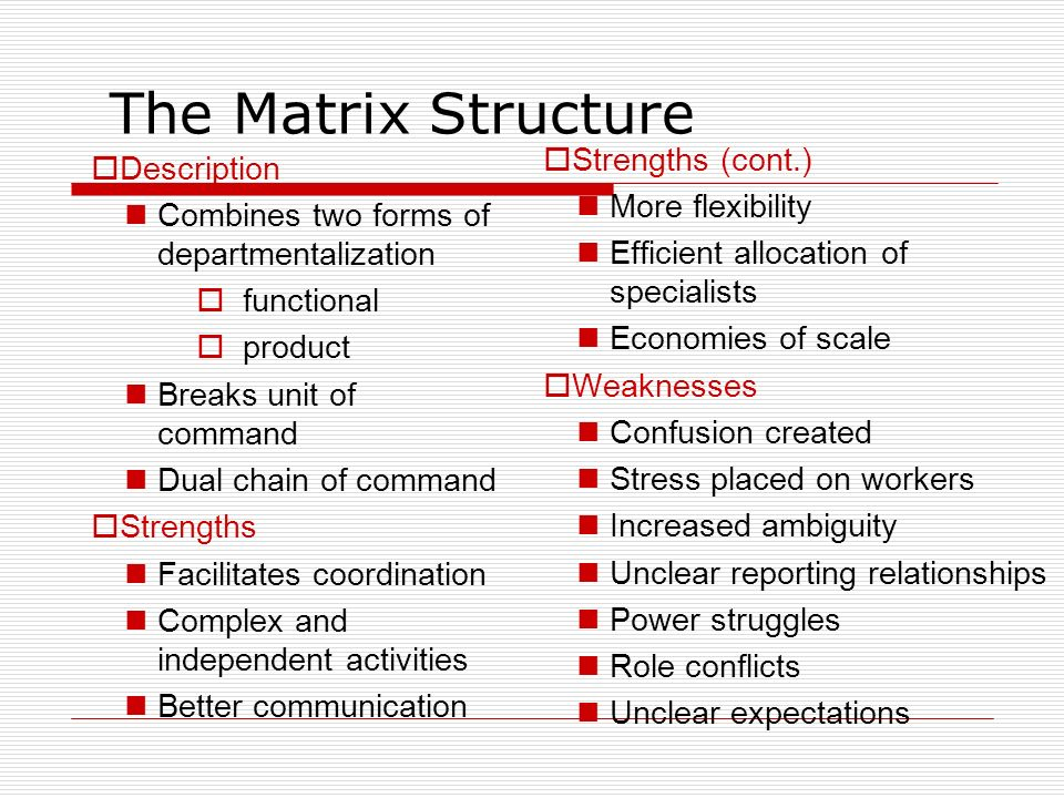 The Matrix Structure Strengths (cont.) Description More flexibility