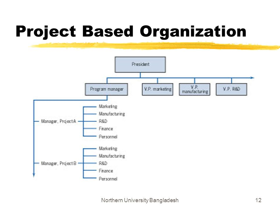 pure project structure the pure project organization When there are several successive projects of a similar kind, the pure project organization can maintain a permanent cadre of experts who develop skills in specific technologies the organizational structure tends to support a holistic(целостный).