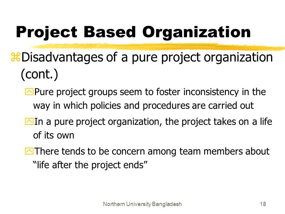 disadvantages of organization