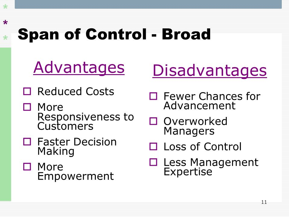 Advantages Disadvantages Span of Control - Broad Reduced Costs