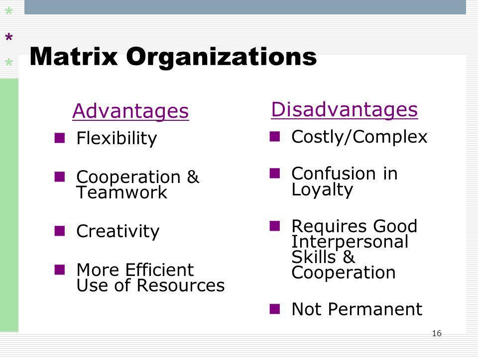 Matrix Organizations Advantages Disadvantages Flexibility