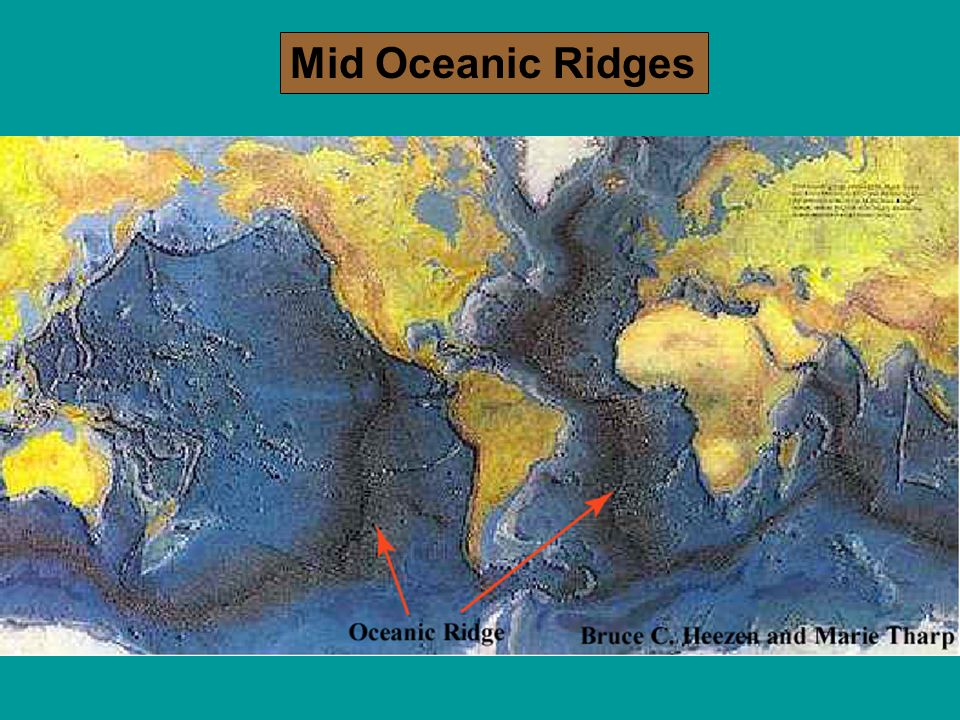 The Dynamic Ocean Floor Lab 7 Ppt Video Online Download