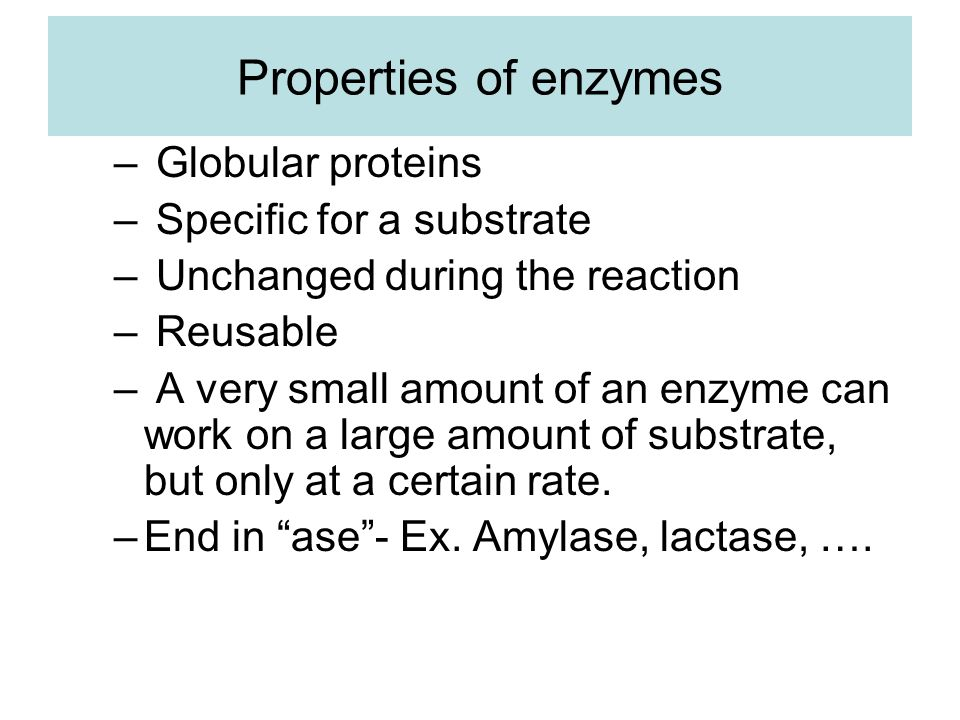 Properties of enzymes essays