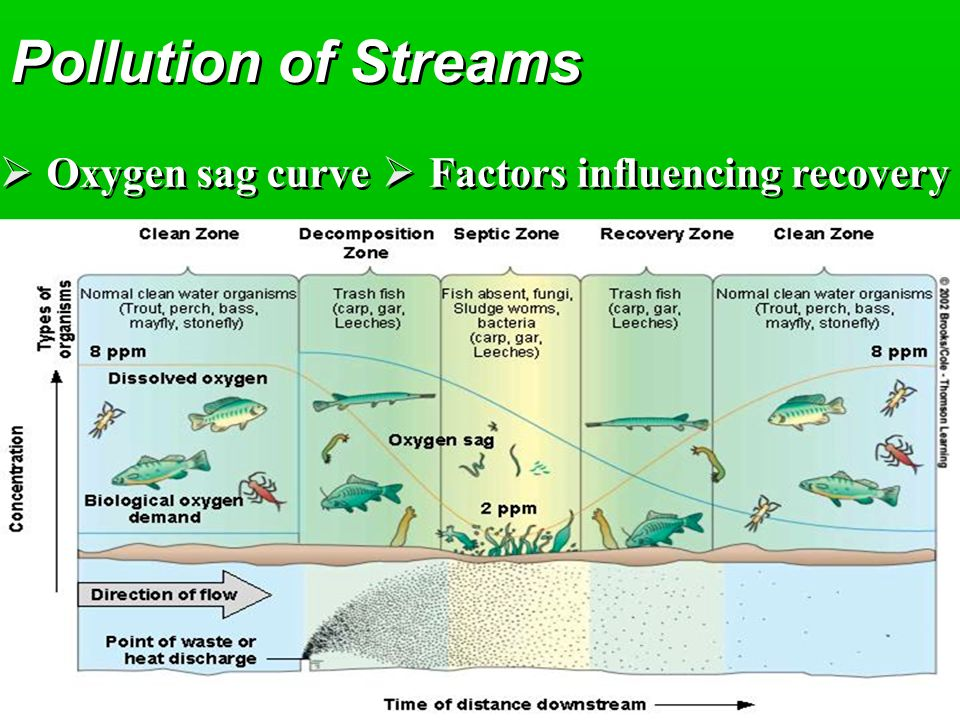 Pollution of Streams Oxygen sag curve Factors influencing recovery