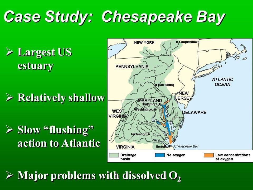 Case Study: Chesapeake Bay