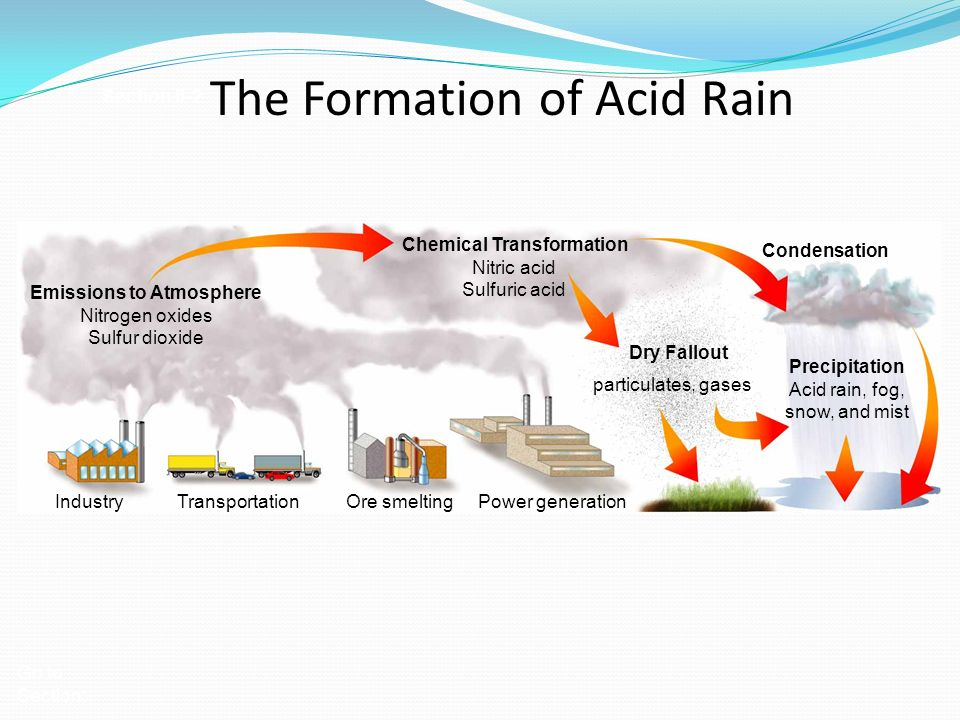 the formation chemical composition and negative effects of acid rain Causes, effects, and solutions of acid rain  to the formation of sulfuric acid  which acid rain can enter the lakes some chemical.