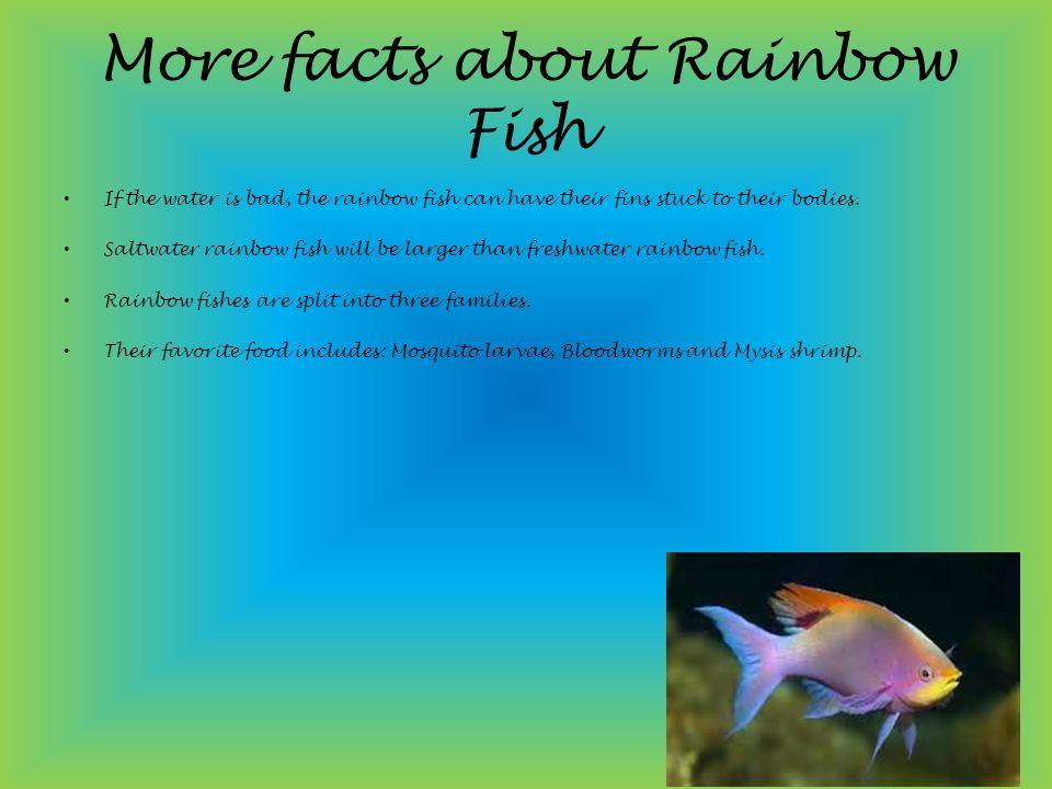 Rainbow fish ROHIT PILLAI ppt download