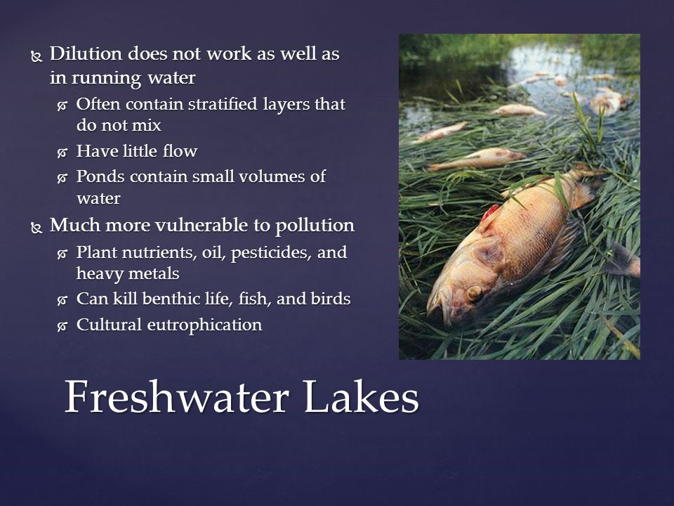 Freshwater Lakes Dilution does not work as well as in running water