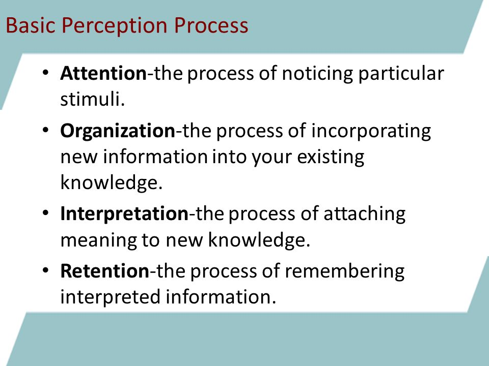 What Are the Characteristics of Perception?