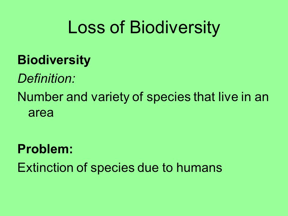 species area relationship definition for kids