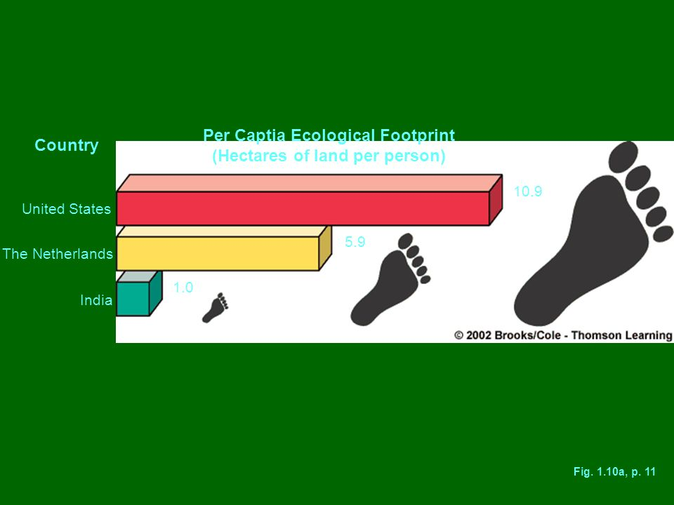Per Captia Ecological Footprint (Hectares of land per person)