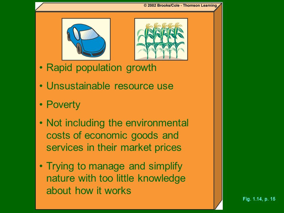 Rapid population growth Unsustainable resource use Poverty