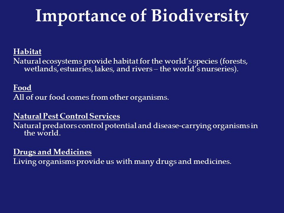 the importance of biodiversity It is important to have biodiversity on earthbeacause,we need water trees food and etc to be alive on this beautiful planet earthif we dont have trees we cant live on this earthand its same with water food and etc.