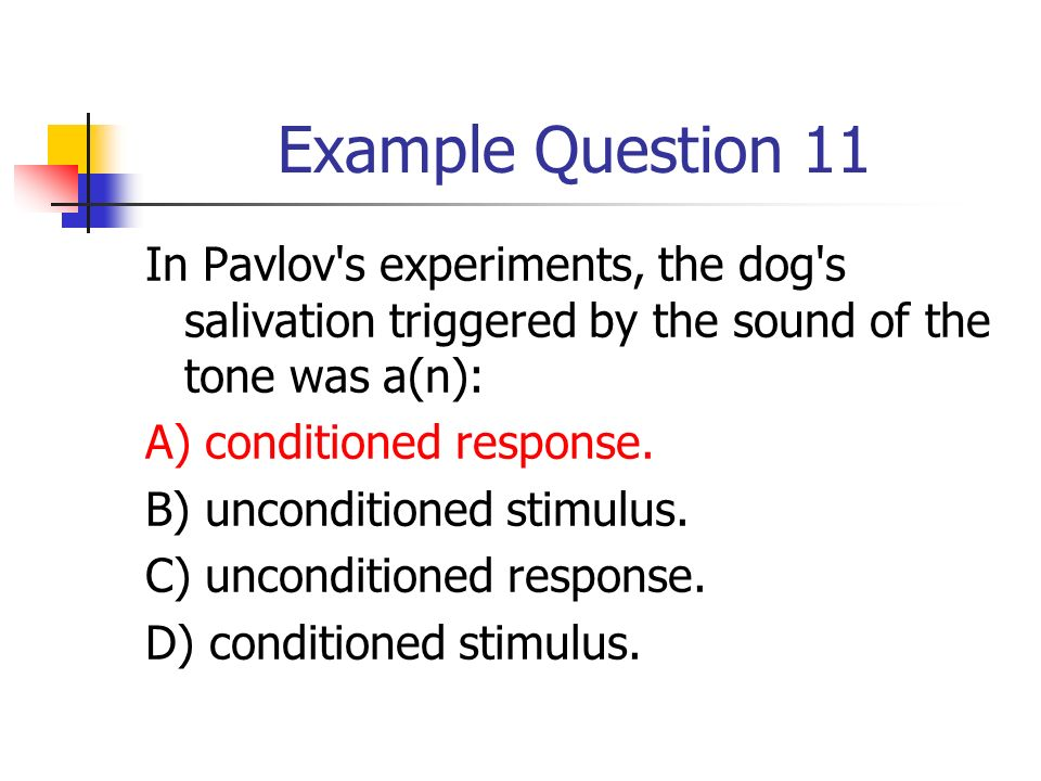 In Pavlov S Experiments The Dog S Salivation Triggered