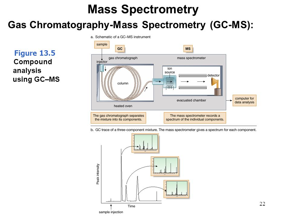 gas chromatography mass spectrometry in food analysis Some substances must be extracted from the food analysis by gc, eg fatty acids  from  these include gc‐mass spectrometry, and gc‐infrared spectroscopy.