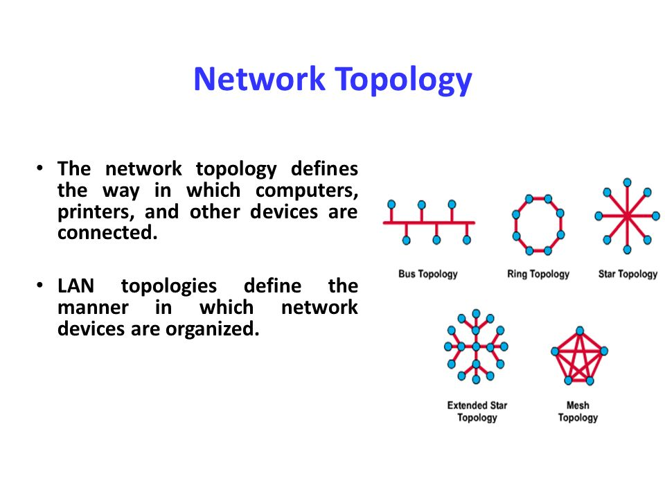 an introduction to network topology Using network time protocol (ntp): introduction and recommended practices technology transfer #06024736a-eng international sematech manufacturing initiative february 28, 2006 7 ntp network topology design [11][12][13.