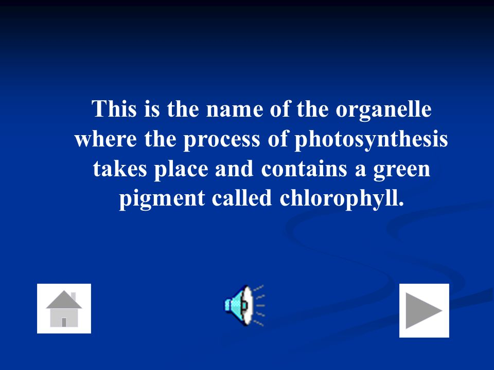 This is the name of the organelle where the process of photosynthesis takes place and contains a green pigment called chlorophyll.