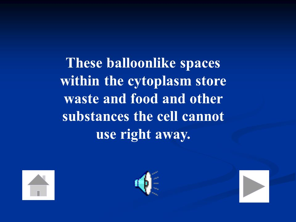 These balloonlike spaces within the cytoplasm store waste and food and other substances the cell cannot use right away.