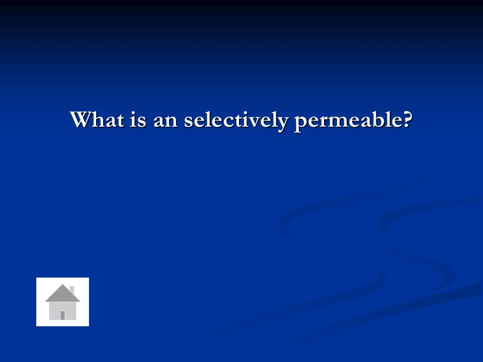 What is an selectively permeable