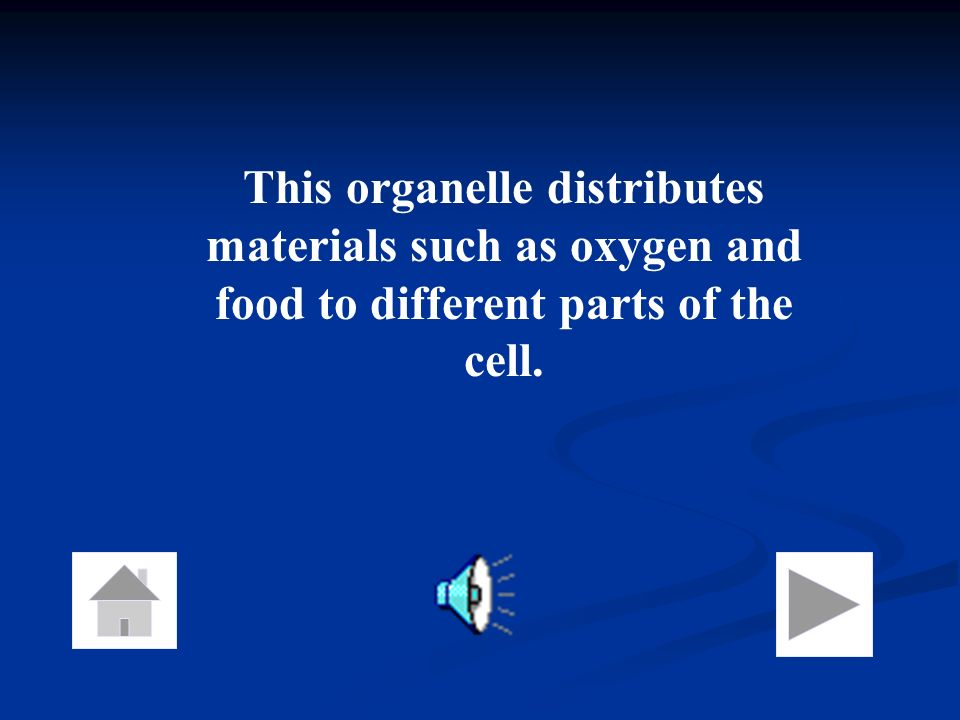 This organelle distributes materials such as oxygen and food to different parts of the cell.