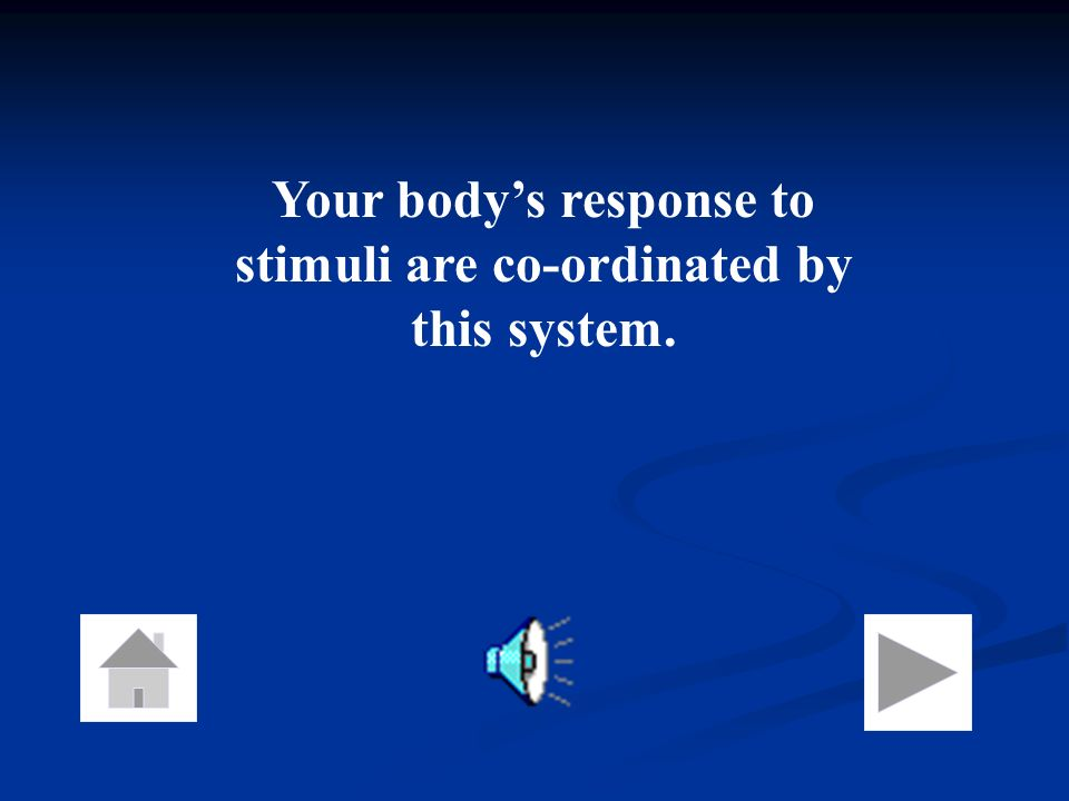 Your body's response to stimuli are co-ordinated by this system.