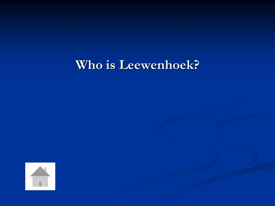 Who is Leewenhoek