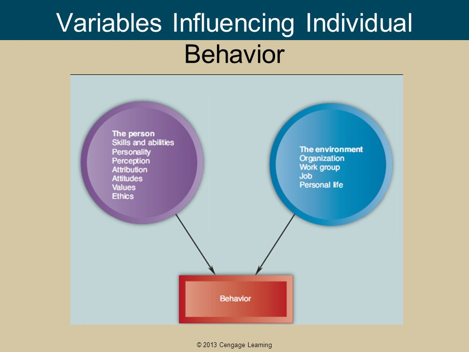 personality and work behavior