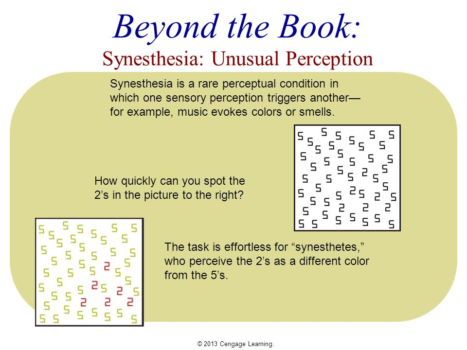 the notion of joined perception called synesthesia When she joined the  what we call taste in the common language is also called flavor in the  experts are divided on the notion of quality and.