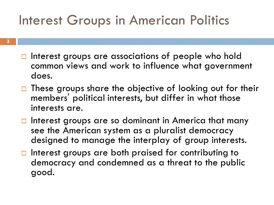 the influence of political interest groups essay