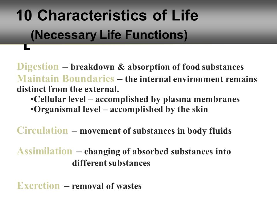 life processes organismal level Plant biology (major)  life on earth from the molecular to the supra-organismal level, with a focus on plants and fungal systems and processes that underpin.