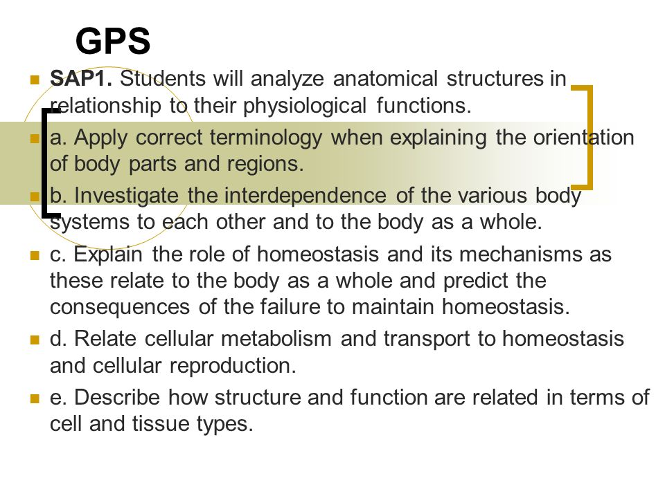 figure 1 6 interdependent relationship of cells body systems and homeostasis