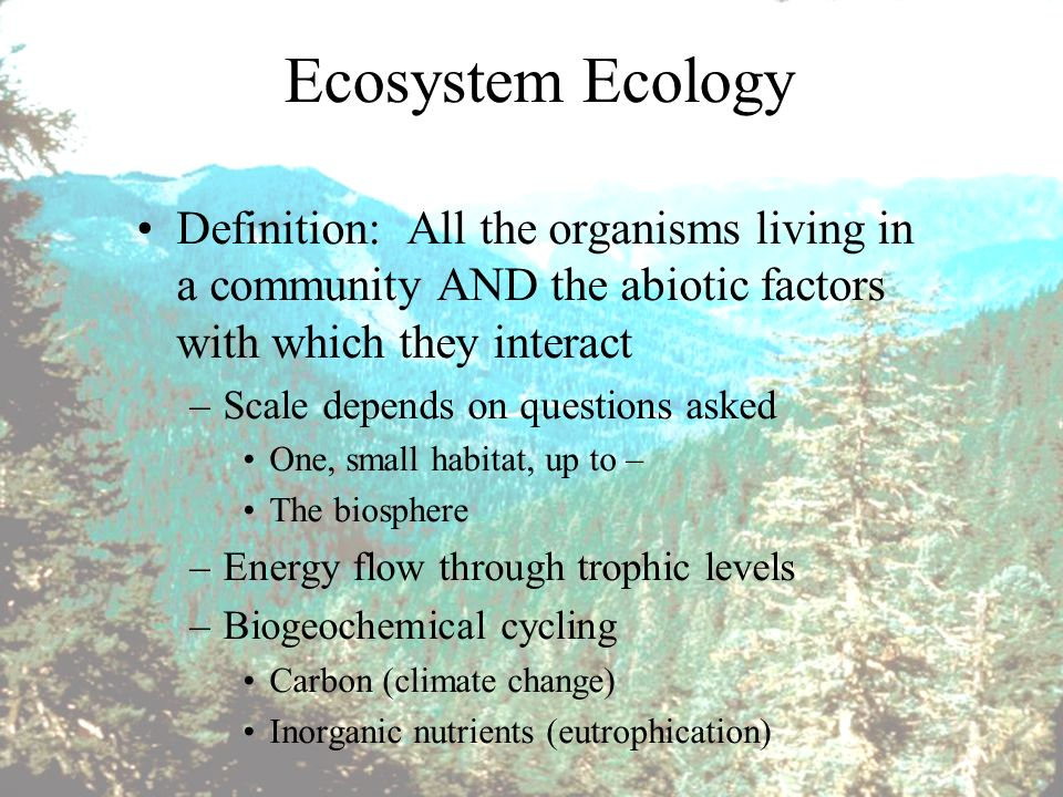 Biotic and Abiotic Factors Influence on Ecosystems