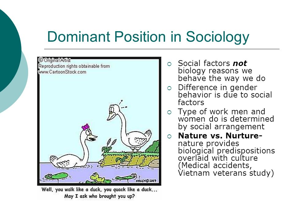 nature and nurture a gender sandwich Are you wondering whether nature and nurture have the same the question of how nature versus nurture influences human ranging from gender.