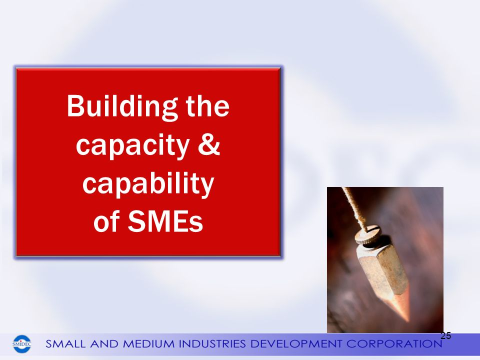 Building the capacity & capability of SMEs