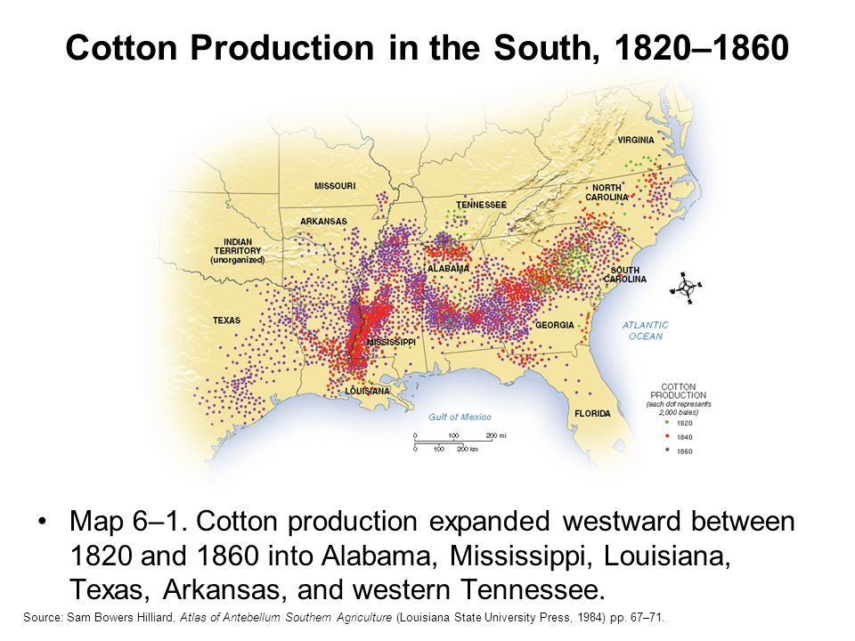 cotton production questions Study guide ch 16 ap us history the south and the slavery controversy, 1793-1860 the south's dependence on cotton production tied it to the plantation system and slavery key questions: 1 how did the reliance on cotton production and slavery affect the south economically.