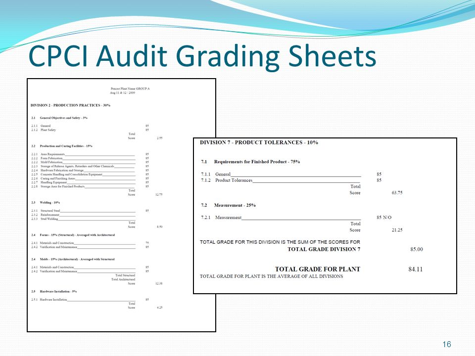 CPCI Audit Grading Sheets