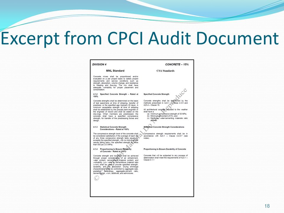 Excerpt from CPCI Audit Document