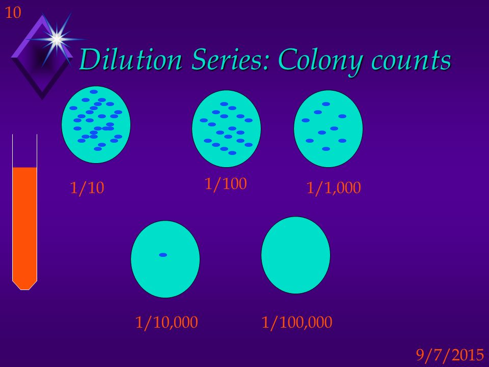 Dilution Series: Colony counts